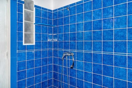 Impressive bathroom with blue tiles