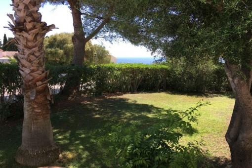 Backyard with sea views