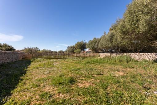 plot in San Luis