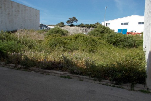 Two adjoining building plots on the industrial estate of Alaior